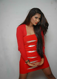 Neha Saxsena spicy Red Dress at Dandu Film Press Meet